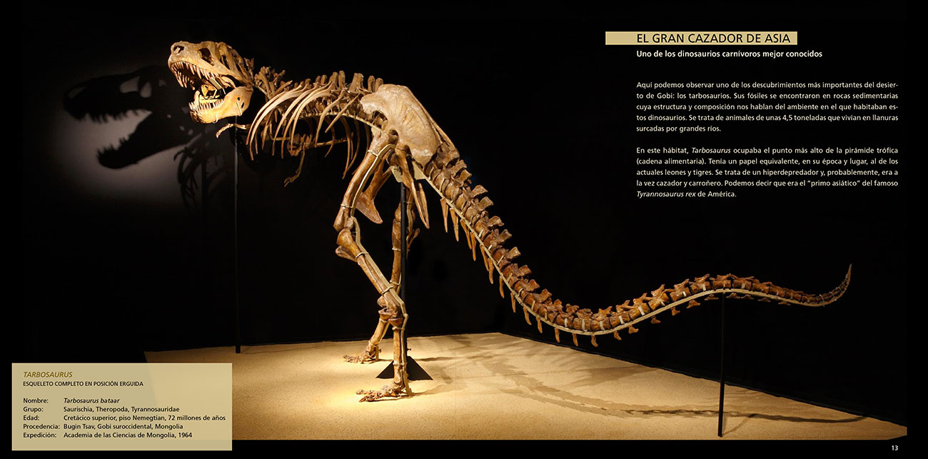 dinosaurios-gobi-2