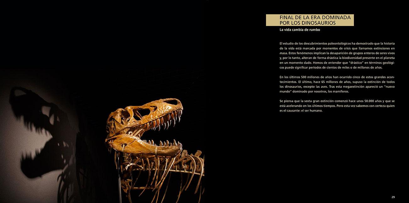 dinosaurios-gobi-3