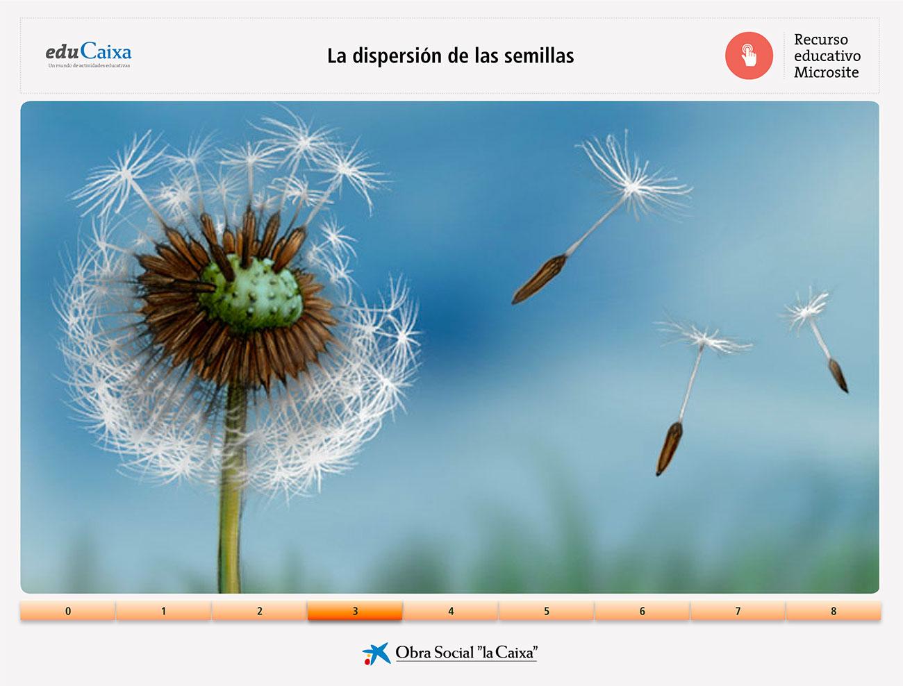 dispersion-semillas